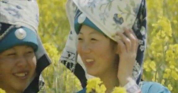 [MV]I am Flower