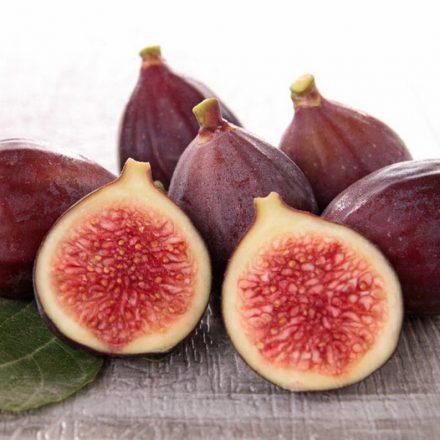 Fruit Fig